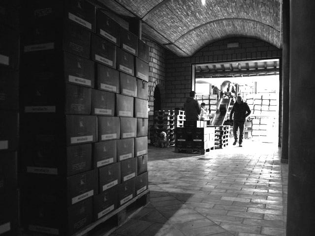 Serraiola Wine vendemmia 2017
